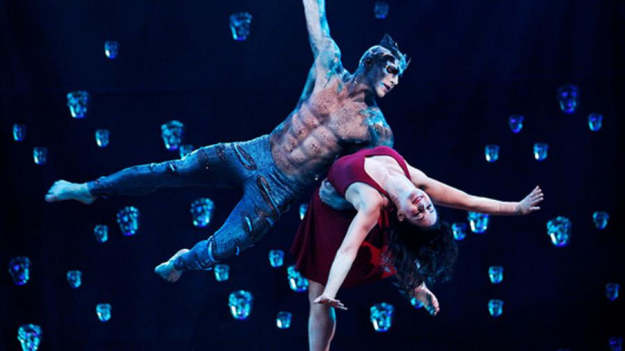Cirque Du Soleil Vallarta