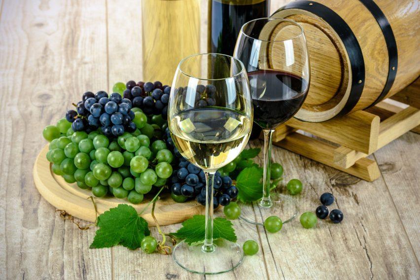 1er Festival del Vino Queretano: lo que tienes que saber