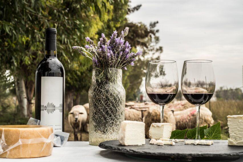 Caminos de Querétaro Gastrofest: queso y vino